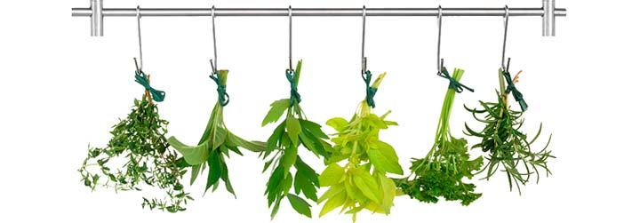 травы для лечения кист