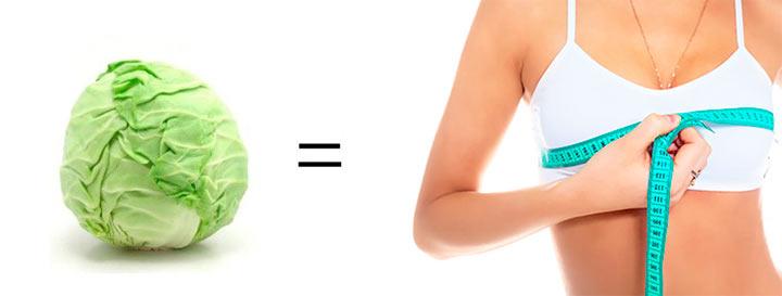 капуста увеличивает грудь