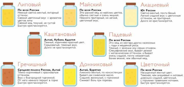 сорта меда
