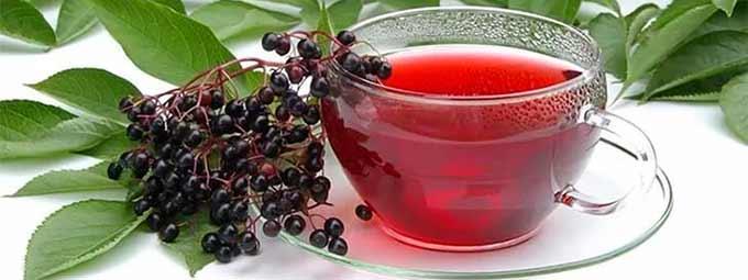 травяной чай с бузиной