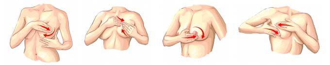 самообследование груди у женщин