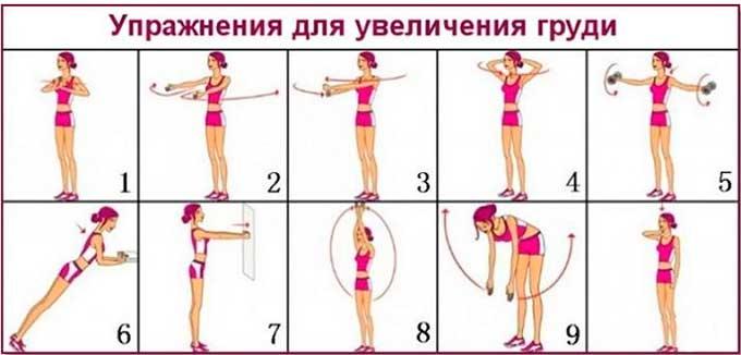 Гимнастика для увеличения мышц груди у женщин