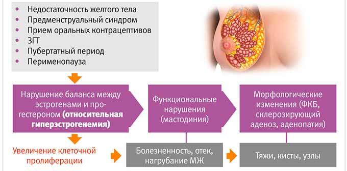 Изменения в молочных железах и мастопатия